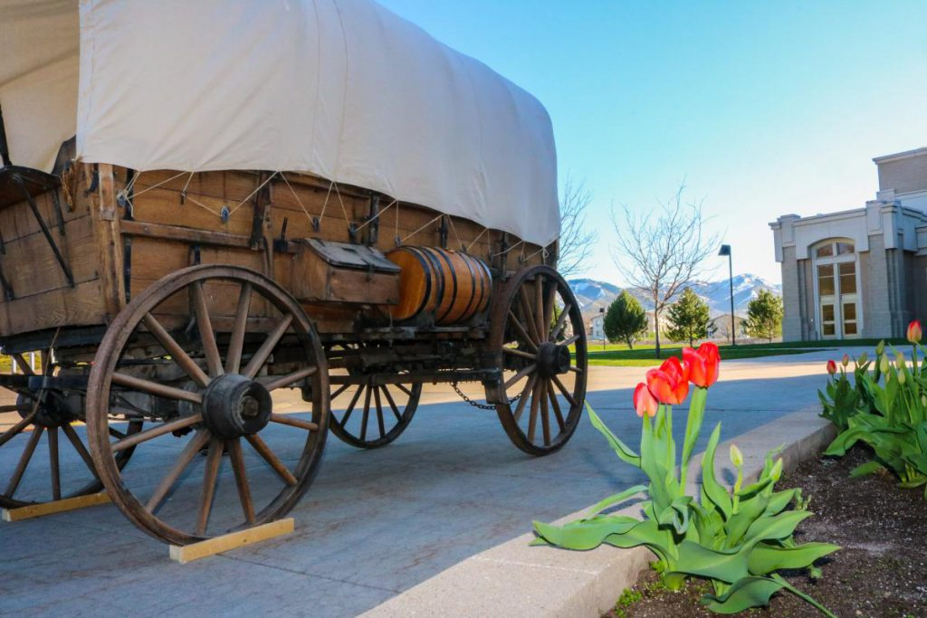 covered wagon near flowers