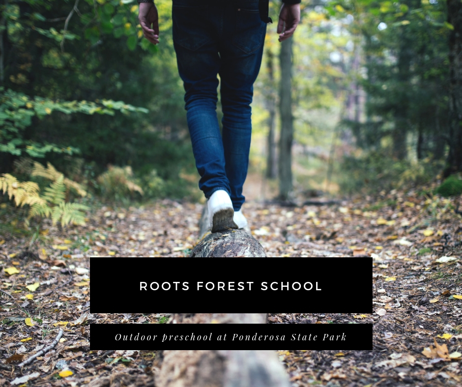 roots forest school