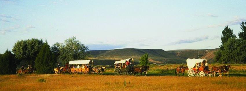 covered wagons with horses on the Oregon Trail