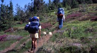 discover idaho trails